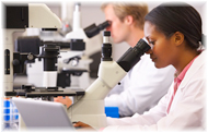 Numero de Científicos y la necesidad de incrementarlos