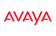 Los socios del año de Avaya