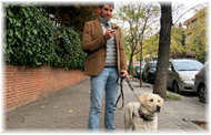 Lanzan APP para personas ciegas